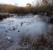 002-Langsam-füllen-sich-wieder-die-Torfstiche-22.01.2019-L.-Klasing-34