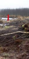 004-11-02-2006-Test-Ein-Kleiner-Versuchsdamm-Pfeil-Soll-Das-Wasser-Anstauenl-Klasing