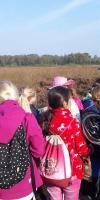Emsdettener Venn Naturforschertag Regenbogenschule 22.09.2017 (11)