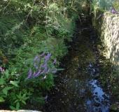 Hummertsbach: Rheiner Str. an der alten Molkerei