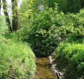Hummertsbach: Nähe Wasserwerk Ortheide