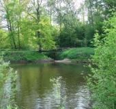 008-Hummertsbach-mündet-gegenüber-Bockholtsfähre-in-die-Ems-02.05.2009-L.-Klasing