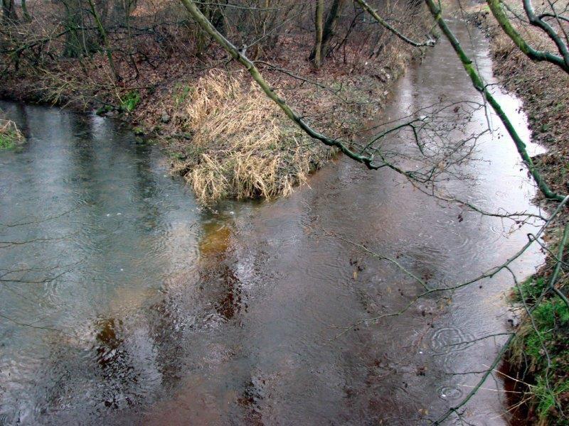 Hummertsbach: Westumer Landstr. Nähe Regenwasser-Rückhaltebecken-L. Klasing