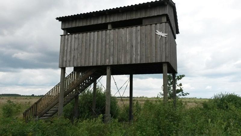 Recker Moor: Aussichtsturm