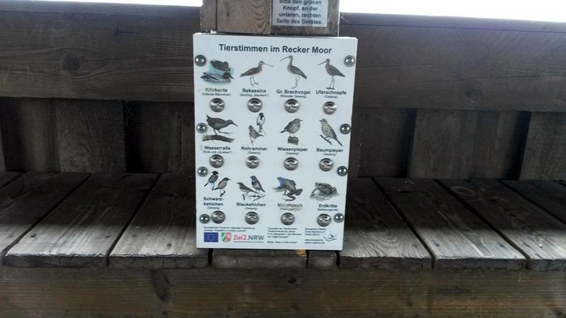 Recker Moor: Vogelstimmentafel der Vögel