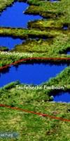 000-Ende-2013-Begannen-Willi-Winter-U-Ich-Ludwig-Klasing-Mit-Der-Entkusselung-Der-Faulbaumecke-Markierter-Bereich