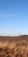 004-Faulbaumecke-14-02-2014-L-Klasing
