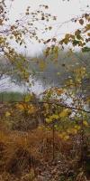 017-Herbststimmung-Im-Emsdettener-Venn-L-Klasing